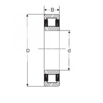 40 mm x 80 mm x 23 mm  SIGMA NU 2208 cylindrical roller bearings