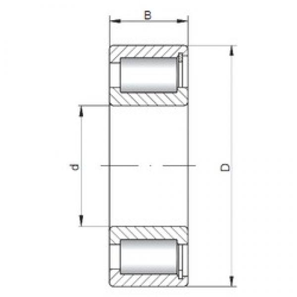 150 mm x 225 mm x 56 mm  ISO NCF3030 V cylindrical roller bearings #1 image
